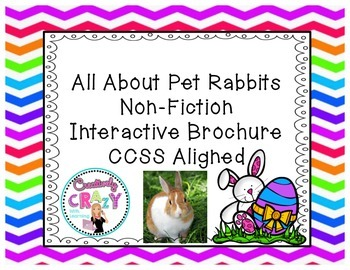 Pet Rabbits Research, Writing, and Technology: Interactive