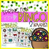 Spring fun - BINGO - 2 levels!