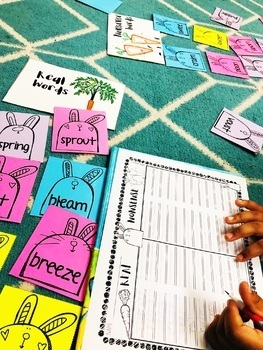 Spring ~ Real and Nonsense Word Sort (Diphthongs & Long Vowel Teams Review)