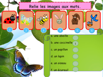 Spring in French bundle (animals, flowers, plural) for beginners