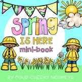 Spring mini-book