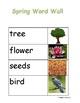 Spring vocabulary in spanish- Primavera