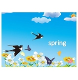 Spring(Chinese Learning)