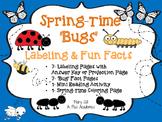 Kindergarten - First - Second - Spring Animals