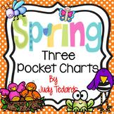 Springtime! (Three Pocket Chart Activities)