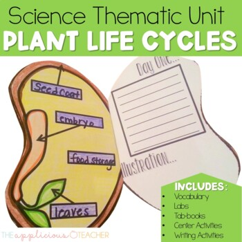 Seed Plant Life Cycle Activities By The Applicious Teacher Tpt