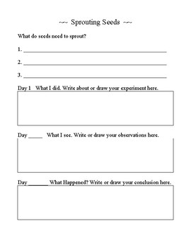 Sprouting Seeds worksheets