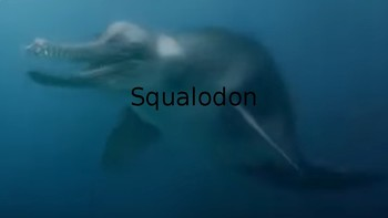 Squalodon info on extinct dolphin