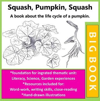 Squash Life Cycle Big Book