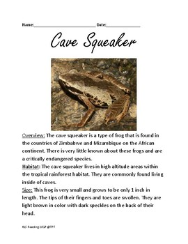 Squeaker Frog - endangered informational article lesson information questions