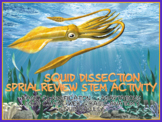 Squid Dissection Spiral Review STEM Activities