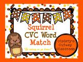 Squirrel CVC Word Match