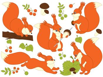 Squirrel Clipart - Digital Vector Animals, Squirrels Clip Art