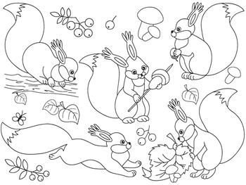 Squirrel Clipart - Digital Vector Squirrel, Forest, Squirr