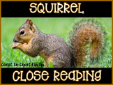Squirrel ~ Nonfiction CLOSE Reading