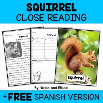 Close Reading Passage - Squirrel Activities