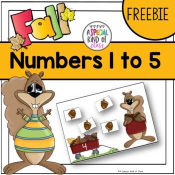 Squirrel Counting Numbers Freebie