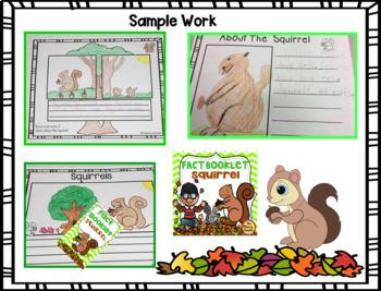 Squirrel Fact Booklet