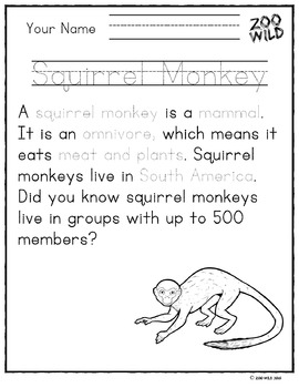 Squirrel Monkey -- 10 Resources -- Coloring Pages, Reading & Activities