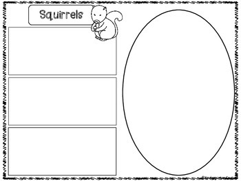 Squirrels Graphic Organizers