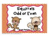 Squirrels Odd or Even Task Cards