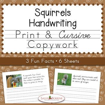Squirrels - Print and Cursive Copywork or Handwriting