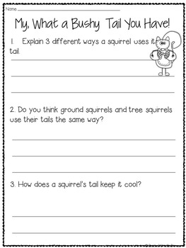 Squirrels Nonfiction Reading