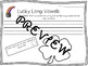 St. Patrick's Day Long Vowel Practice