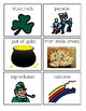 St. Patrick's Comprehension Questions with Visuals