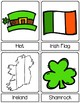 St Patrick's Day Clipart | 3-Part Cards | Montessori-Inspired