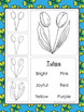 St. Patrick's Day Poems and Directed Drawing Spring March Kindergaten