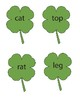 St Patrick's Day Real and Non-sense word sort