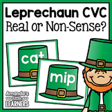 St. Patrick's Day Word Work