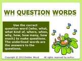 St. Patrick's Day Fun WH Questions Grammar
