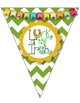 St. Patrick's Day Pennant Banner!