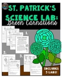 St. Patrick's Day Science Lab: Colored Carnations