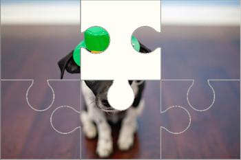 St. Patty's Puppy Digital Puzzle VIPKID