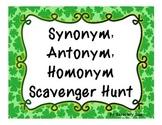 St. Patty's Synonym, Antonym, Homonym Scavenger Hunt