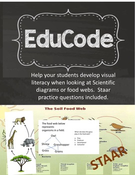 Staar Science Visual Literacy