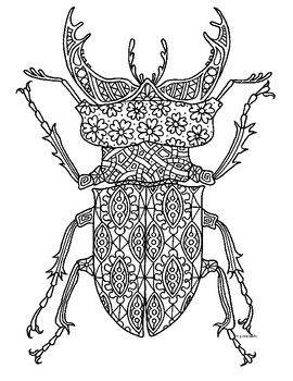 Stag Beetle Insect Zentangle Coloring Page
