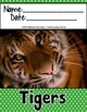 Tigers {Nonfiction Animal Research Report}