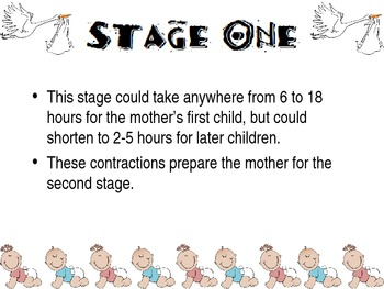 Stages of Labor Powerpoint for FCS Child Development
