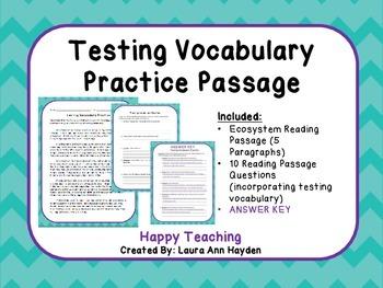 Standardized Testing Vocabulary Bundle