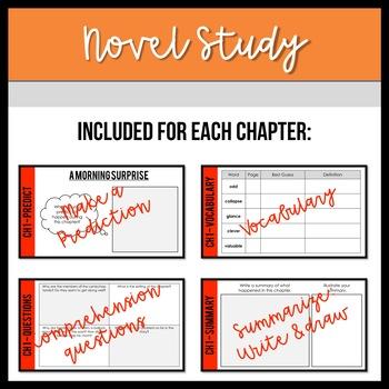 Stanley, Flat Again! DIGITAL Novel Study and Tests Google Classrooms - NO PREP!
