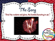 Star Spangled Banner MEGA Activity Pack - Lesson Plans, Centers, Presentation