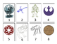 Star Wars Grouping Cards--Colored