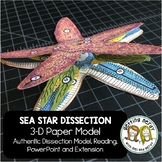 Sea Star - Starfish Paper Dissection - Scienstructable 3D