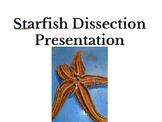 Starfish Echinoderm Dissection Presentation