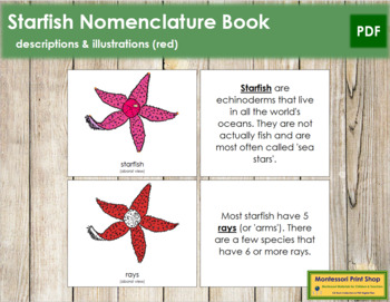 Starfish Nomenclature Book (Red)