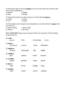 Stargirl Vocabulary Assessment